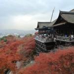 京都の紅葉おすすめ時期は?ライトアップも綺麗!